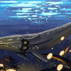 The-Not-So-Killer-Whales-of-Bitcoin-1120x669-1