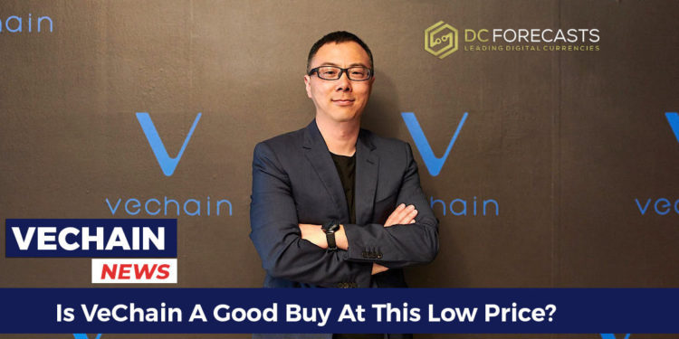 Is-VeChain-A-Good-Buy-At-This-Low-Price-FILEminimizer-750x375